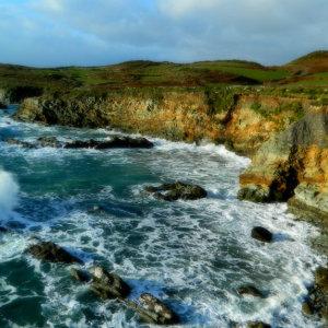 nicole aupair irland erfahrungsbericht4-001
